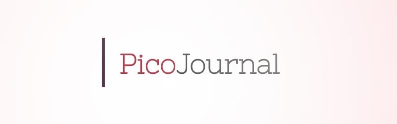 picojournal1