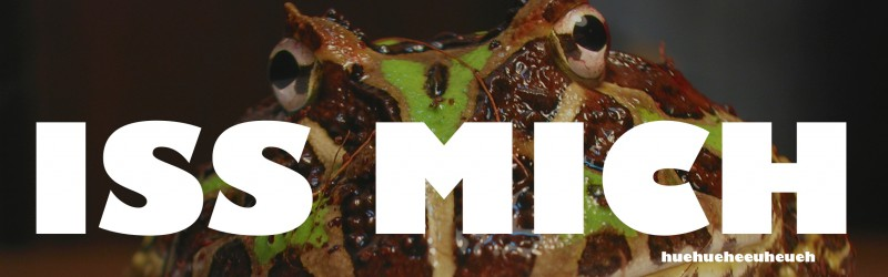 [Buch] Eat that Frog! – Äußerst deliziös