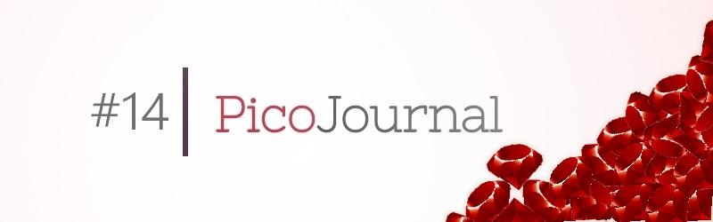 picojournal14