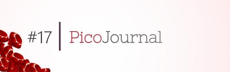 PicoJournal – Bilder zu Posts hinzufügen mit Paperclip